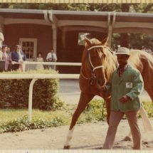 Secretariat in the Paddock at the Belmont Stakes