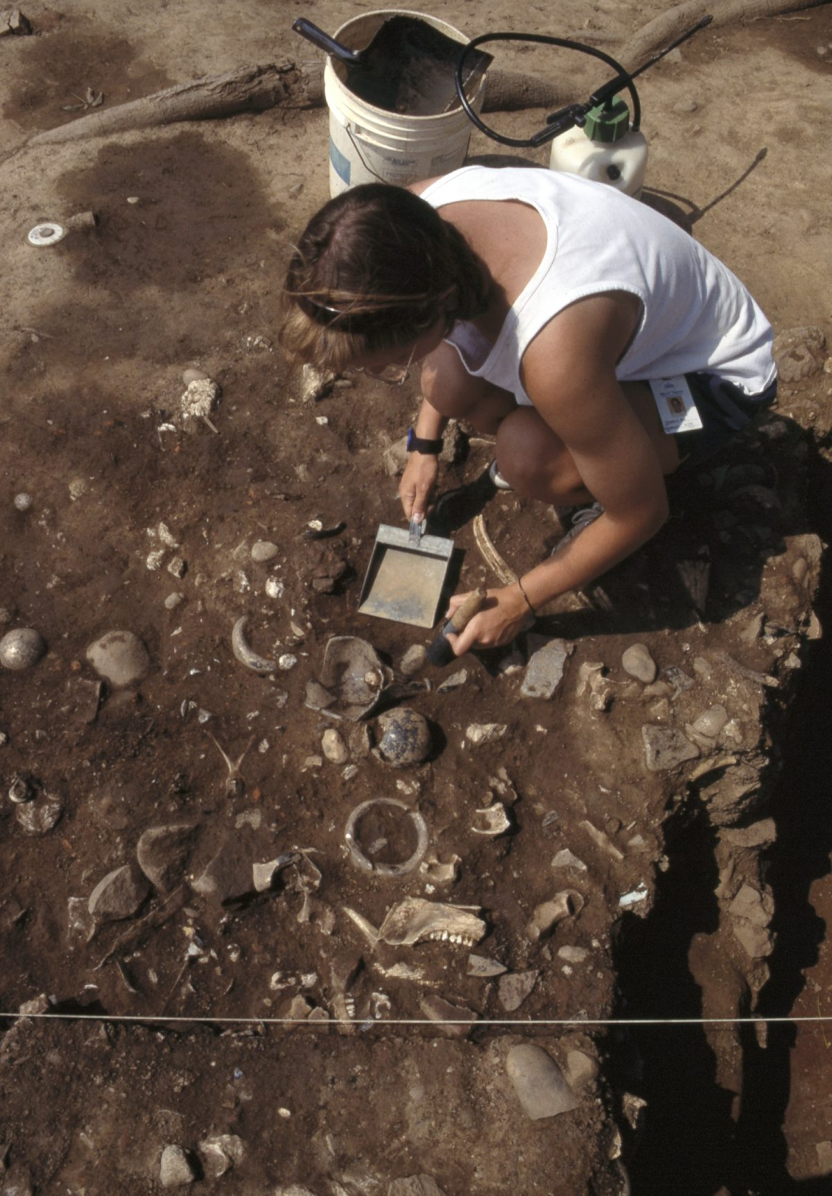 Archaeology at Mount Vernon