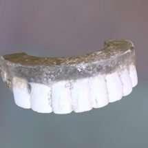 Top Half of George Washington's Dentures