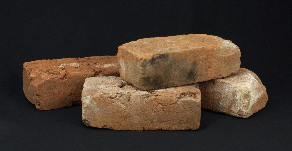 Anatomical Theatre Bricks