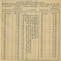 Slave Life Insurance Rates