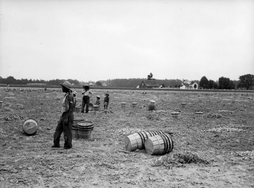 Migrant Workers Near Accomac