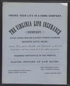 Slave Insurance
