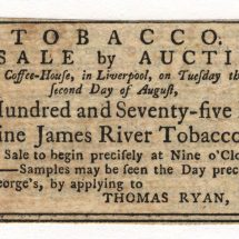 Tobacco Auction in Liverpool