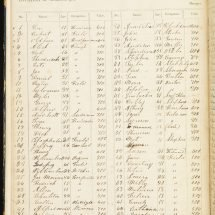 Inventory of Negroes in Philip St. George Cocke's Farm Book