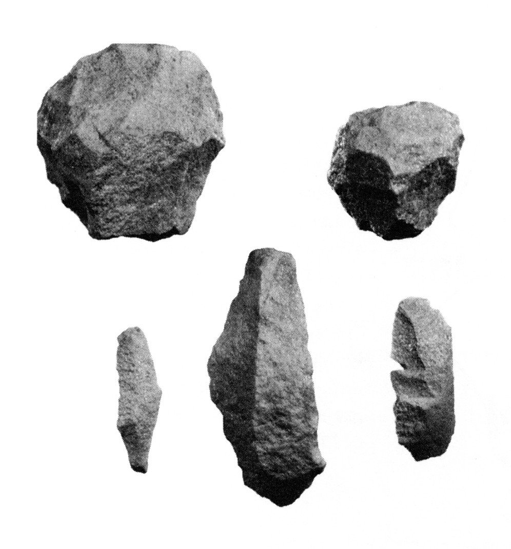 Pre-Clovis Cores and Blade Flakes