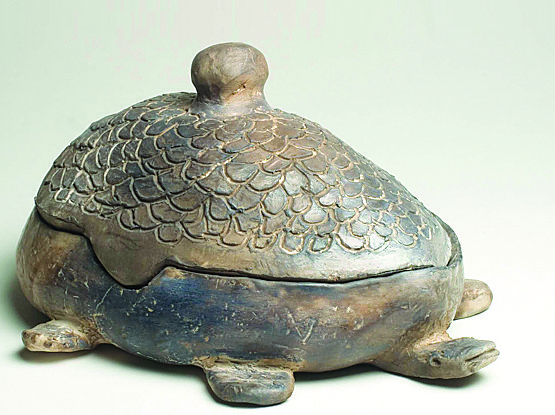 Turtle-Shaped Container