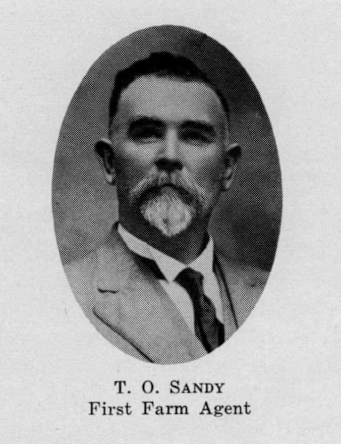 T. O. Sandy